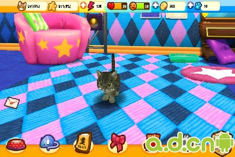 《星猫大道 Cat Runway》