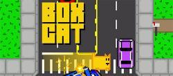 《盒子猫 Box Cat》