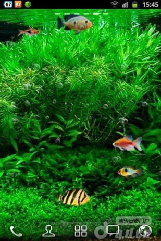 壁纸 安卓 动态/《鱼缸3D动态壁纸》具有逼真的鱼动画和三个不同的鱼缸背景,...